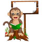 Monkey reading a book Royalty Free Stock Images