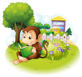 A monkey reading a book near the plants with flowers Stock Photography