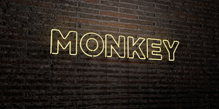 MONKEY -Realistic Neon Sign on Brick Wall background - 3D rendered royalty free stock image Royalty Free Stock Photo