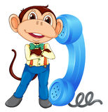 A monkey with receiver Stock Photo
