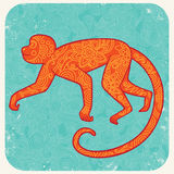 Monkey2 Royalty Free Stock Photo