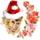 Monkey in a red cute Santa Claus hat. Amazing Royalty Free Stock Photography
