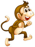 A monkey running Royalty Free Stock Photo
