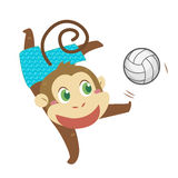 A monkey's beach activities Royalty Free Stock Photo