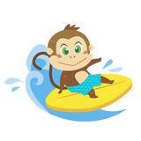 A monkey's beach activities Royalty Free Stock Photography