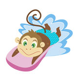 A monkey's beach activities Stock Photo