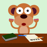 Monkey's examination Stock Photography