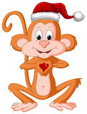 Monkey with Santa Cap Stock Photography