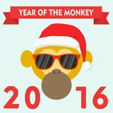 Monkey in santa hat and glasses, symbol of 2016. Royalty Free Stock Photos