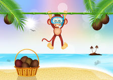 Monkey with scuba mask Royalty Free Stock Photography