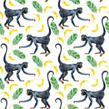 Monkey seamless pattern. Royalty Free Stock Photography