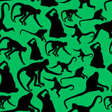 Monkey shadows silhouette green and black pattern Royalty Free Stock Image