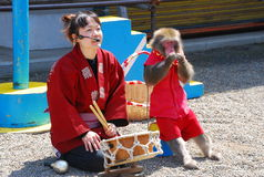 Monkey show Stock Photo
