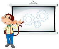 Monkey showing white board Stock Images