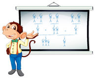 Monkey showing white board Stock Photography