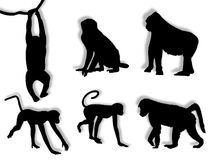 Monkey silhouettes Royalty Free Stock Photos