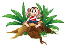 A monkey sitting above the chopped wood Royalty Free Stock Photography