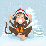 Monkey is sitting on snow and puts cap of Santa Claus Royalty Free Stock Photos