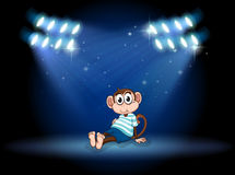 A monkey sitting at the stage with spotlights Royalty Free Stock Photography