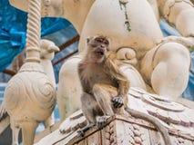 Monkey Sitting on Stone Carving, Malaysia. Monkey Sitting on Stone Carving, Batu Caves, Malaysia royalty free stock photography