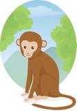 Monkey sitting. Vector illustration of a sitting cute monkey Stock Image