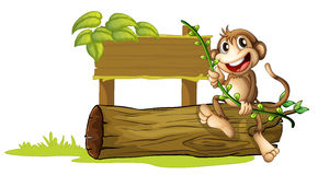 A monkey sitting with a wooden signboard Royalty Free Stock Photos