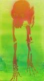 Monkey skeleton 2, airbrush Royalty Free Stock Photo