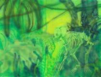 Monkey skeleton, airbrush Stock Photography