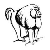 Monkey sketch (black and white) Royalty Free Stock Image