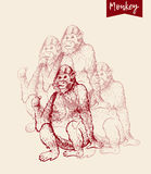 Monkey sketch engraving. Poster of monkeys. Vector illustration. Hand drawn sketch of young orangutan smile, monkey is sitting on its and finger is pointing back stock illustration