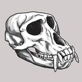 Monkey Skull Vector. Hand Drawn Illustration vector illustration