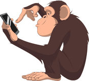 Monkey and smartphone. Vector illustration, funny chimpanzee it is playing with a smartphone vector illustration