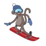 Monkey snowboarding Royalty Free Stock Image