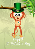 Monkey for St.Patrick's day Royalty Free Stock Image