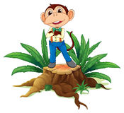 A monkey standing above the wood Royalty Free Stock Photography