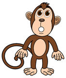 A monkey standing surprised Royalty Free Stock Photos