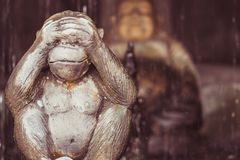 Monkey statue and this Buddhist concept of see no evil Royalty Free Stock Photo