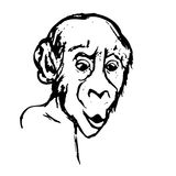 Monkey surprised (abstraction) Royalty Free Stock Photos