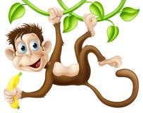 Monkey swinging with banana. A cute monkey swinging from vines with a banana in his hand Royalty Free Stock Photos