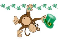 Monkey swinging on vine Stock Images