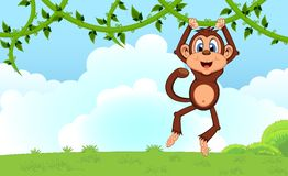 Monkey swinging on vines cartoon in a garden for your design. Colourful Royalty Free Stock Photos
