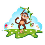 Monkey swinging on vines in a garden Stock Photography
