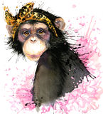 Monkey T-shirt graphics, monkey chimpanzee illustration with splash watercolor textured background. Royalty Free Stock Photos