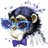 Monkey T-shirt graphics. monkey illustration with splash watercolor textured background. unusual illustration watercolor monkey f stock illustration