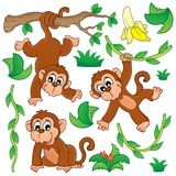 Monkey theme collection 1 Royalty Free Stock Photo