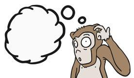 Monkey thinking Stock Photo