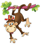 Monkey training circus tail   cheerful Royalty Free Stock Photo