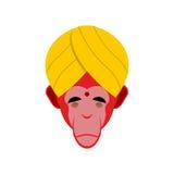 Monkey in turban. Monkey yoga. Head of red monkeys. Monkey India Stock Photo