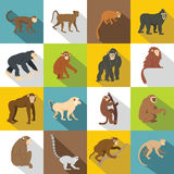 Monkey types icons set, flat style. Monkey types icons set. Flat illustration of 16 monkey types vector icons for web Royalty Free Illustration