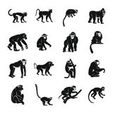 Monkey types icons set, simple style. Monkey types icons set. Simple illustration of 16 monkey types vector icons for web Vector Illustration